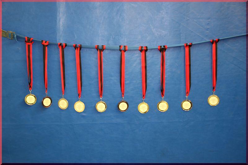 medallien-_2_